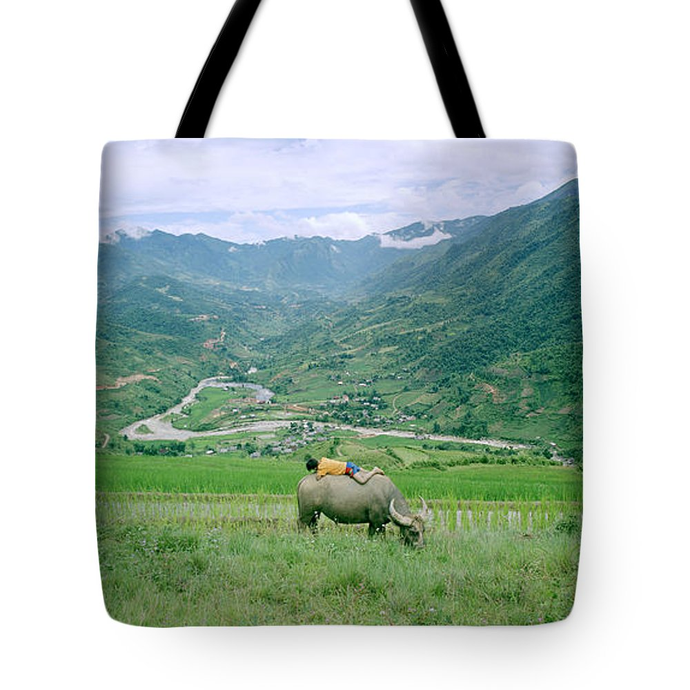 Asia Tote Bag featuring the photograph Sleeping Boy by Shaun Higson