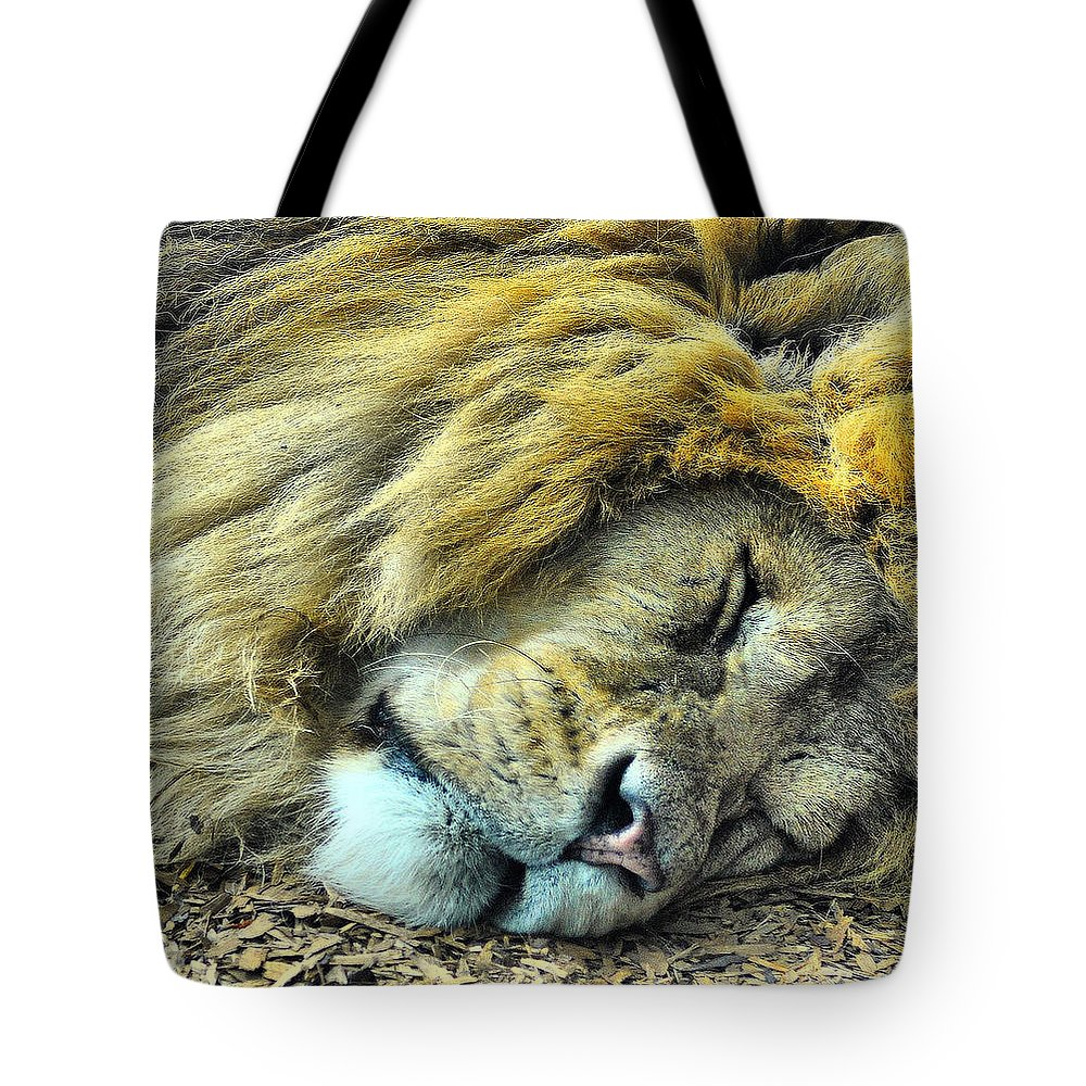 Lion Tote Bag featuring the photograph Sleeping Lion by Chris Thaxter