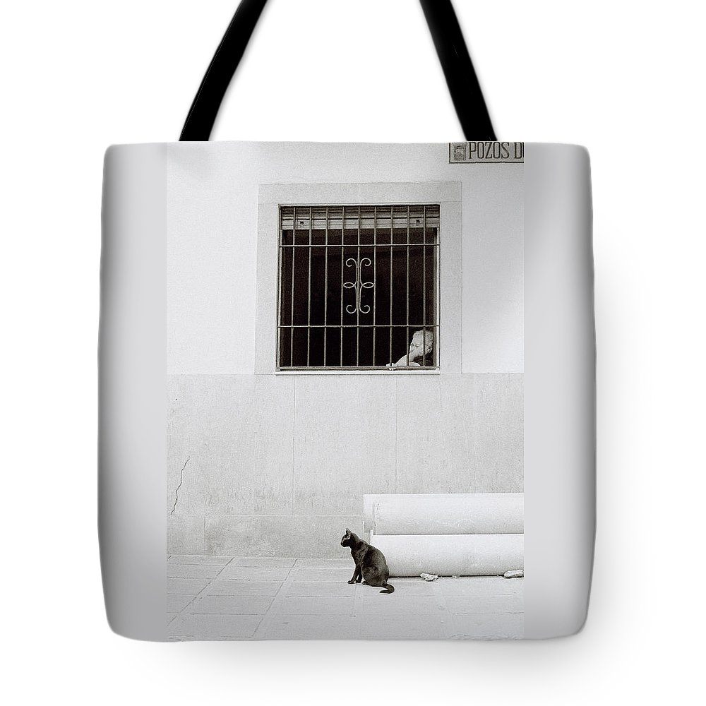 Cat Tote Bag featuring the photograph A Sleepy Afternoon by Shaun Higson
