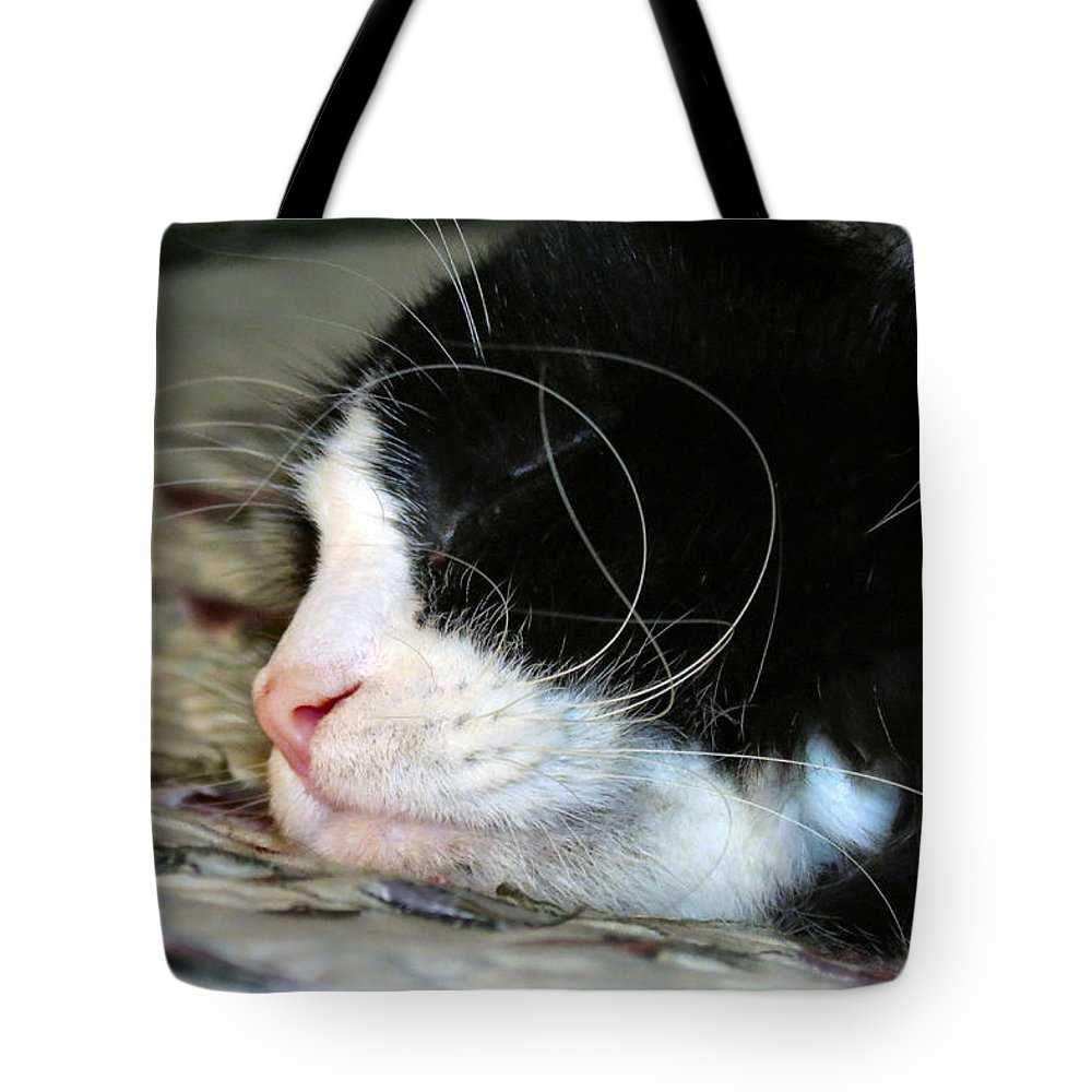 Cat Tote Bag featuring the photograph Sleepytime by Art Dingo