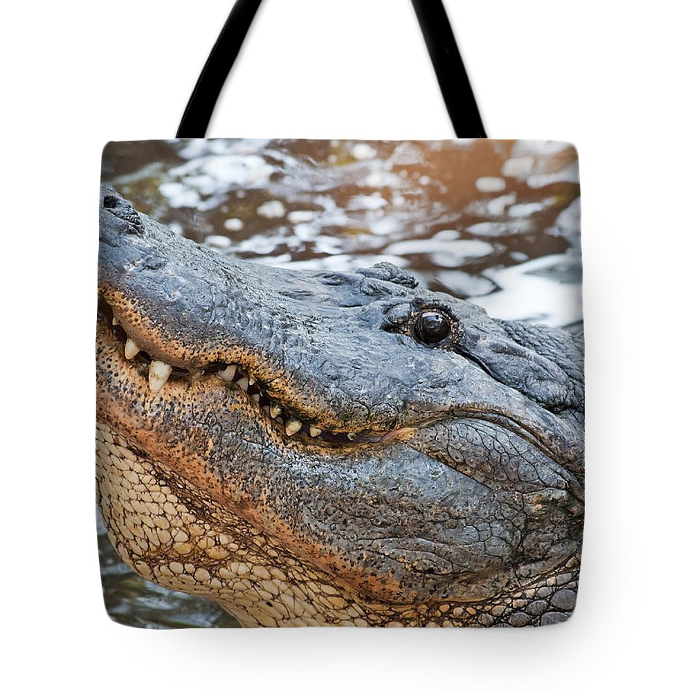 Wildlife Tote Bag featuring the photograph Smiling In The Sun by Kenneth Albin