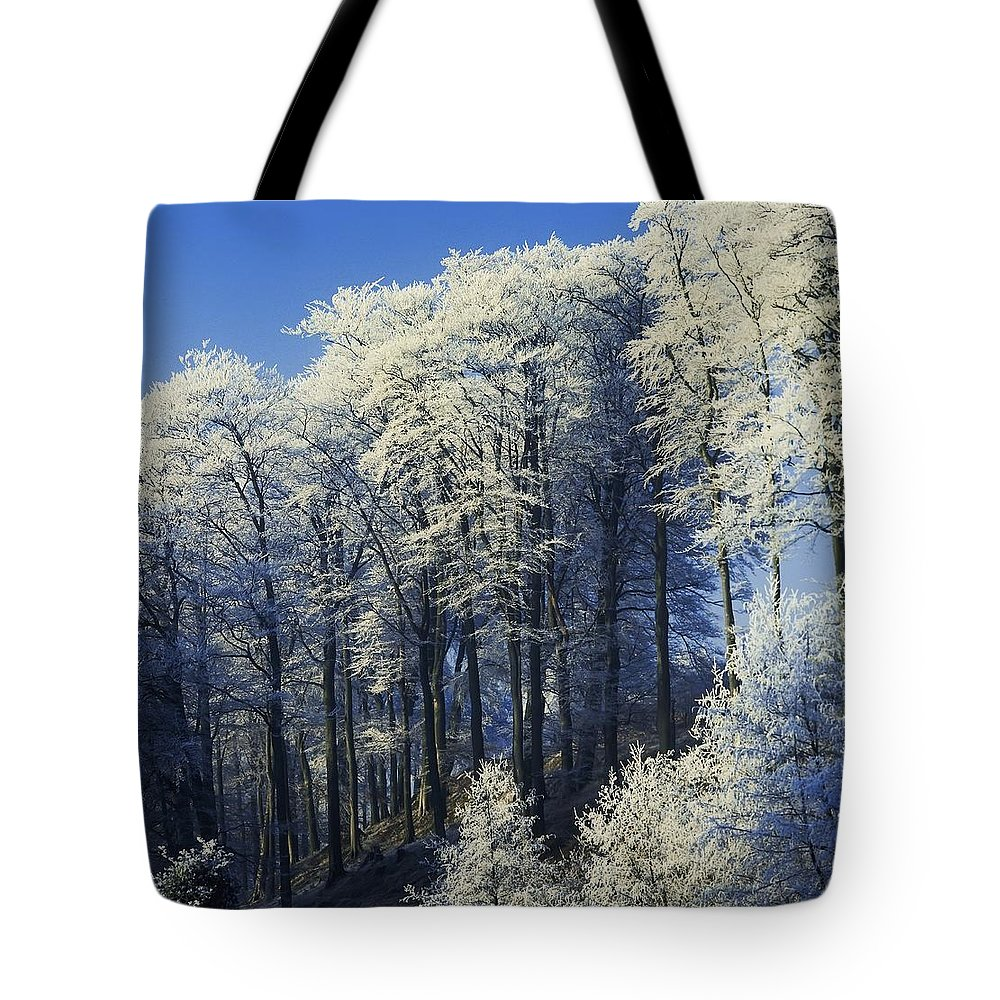 Co Antrim Tote Bag featuring the photograph Snow Covered Trees In A Forest, County by The Irish Image Collection
