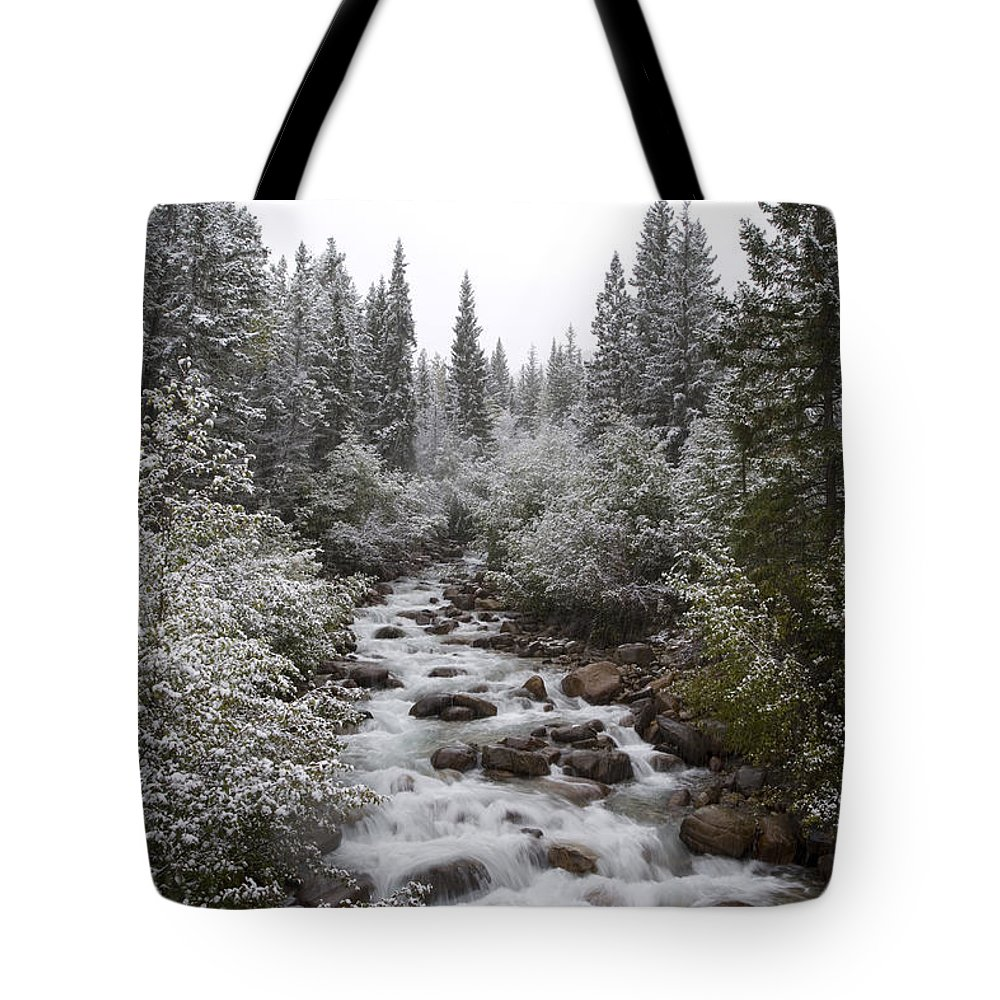 Attraction Tote Bag featuring the photograph Snowy Foliage Along Stream In Autumn by Peter Van Rhijn