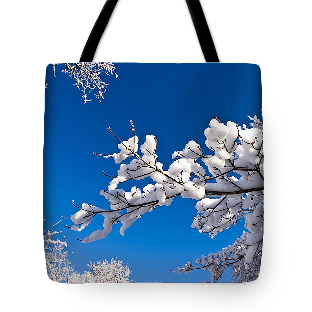 Cold Tote Bag featuring the photograph Snowy Trees And Blue Sky by Lori Coleman