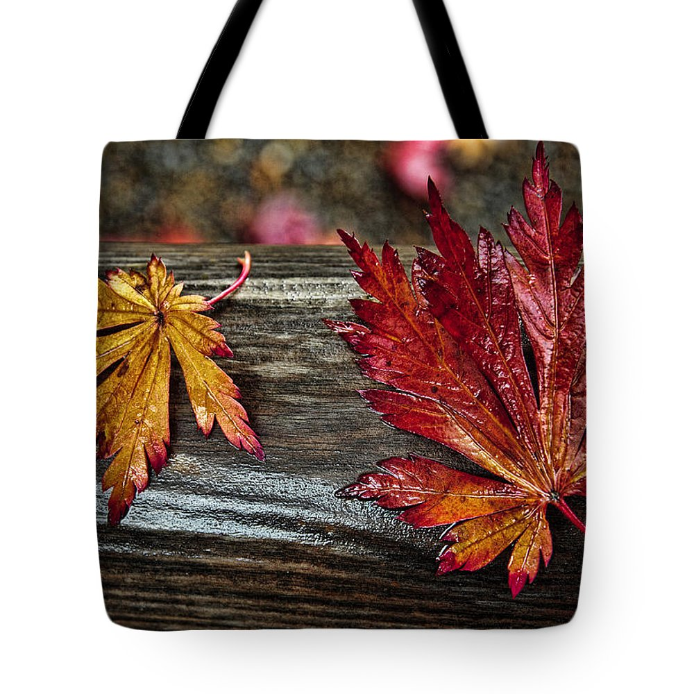 Soaked Leaves Tote Bag featuring the photograph Soaked Leaves by Wes and Dotty Weber