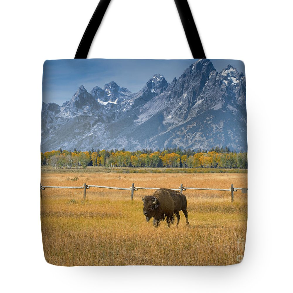 Grand Teton Tote Bag featuring the photograph Solitary Moments by Sandra Bronstein