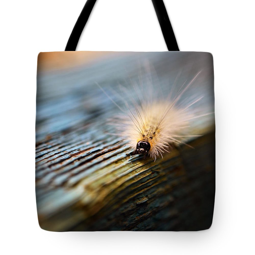 Caterpillar Tote Bag featuring the photograph Something Wicked This Way Comes by Lori Tambakis