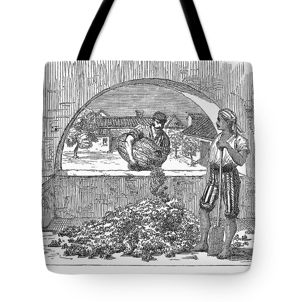 19th Century Tote Bag featuring the photograph Spain: Sherry Production by Granger