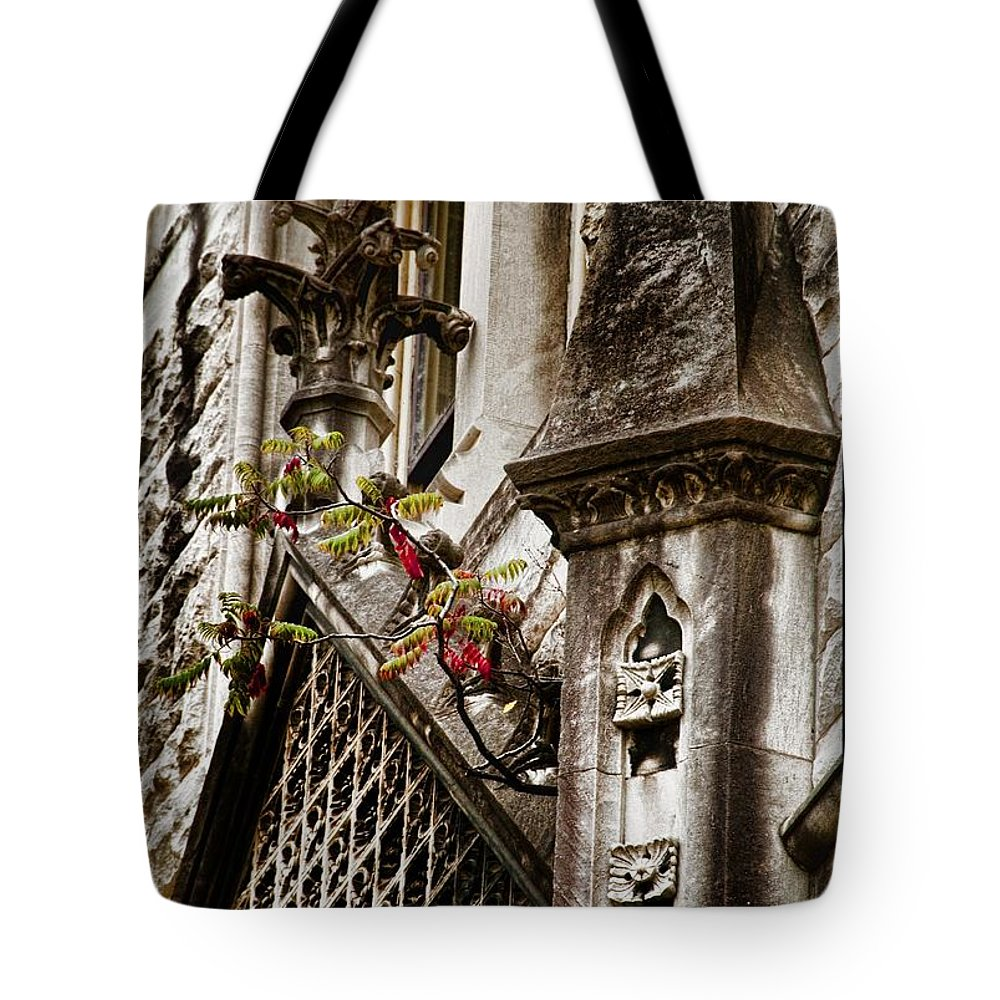Customs House Nashville Tote Bag featuring the photograph Sparse Greenery by Sheri Bartoszek