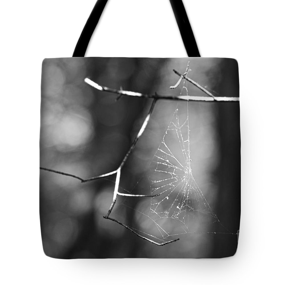 Spider Web Tote Bag featuring the photograph Spider Web by Alan Look