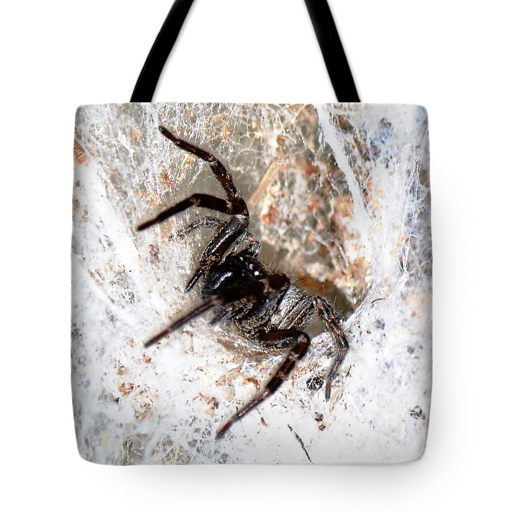 Web Tote Bag featuring the photograph Spiders Trap by Chriss Pagani