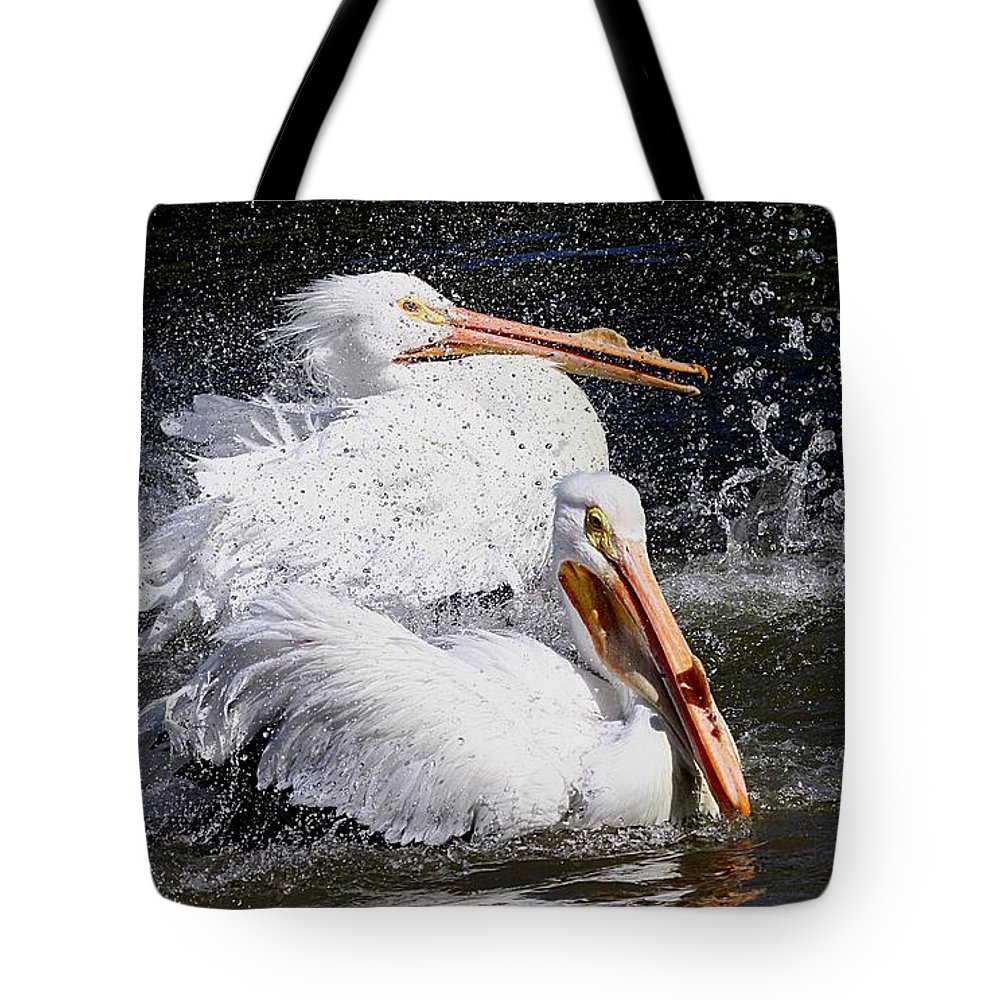Pelicans Tote Bag featuring the photograph Splish Splash by Elizabeth Winter