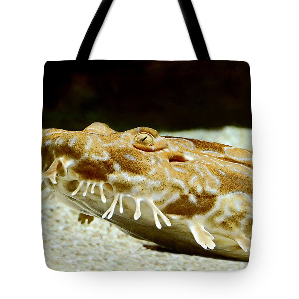 Spotted Tote Bag featuring the photograph Spotted Wobbegong Shark by Rebecca Morgan