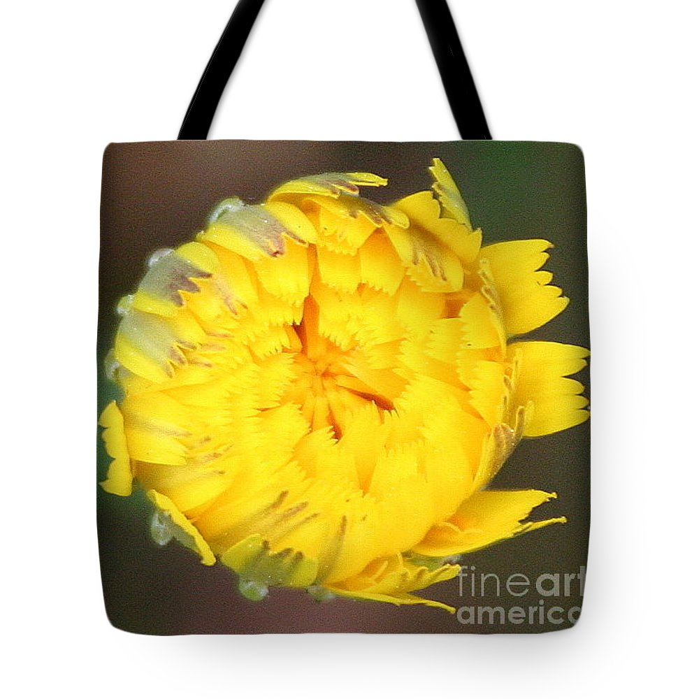 Yellow Flower Tote Bag featuring the photograph Spring Chick by Matthew Wilson