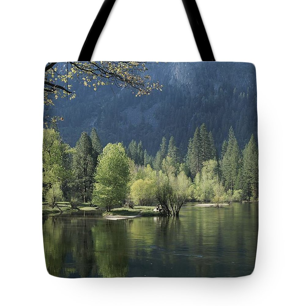 Scenes And Views Tote Bag featuring the photograph Spring View Of The Merced River by Marc Moritsch