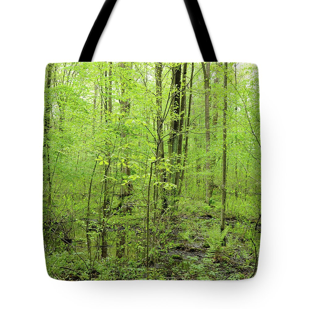 Woods Tote Bag featuring the photograph Spring Woods by Ronald Grogan