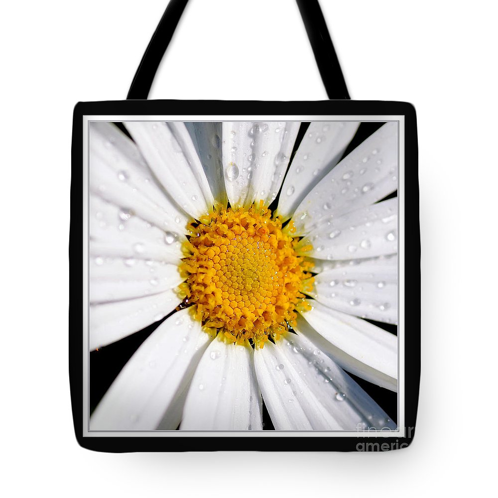 Photography Tote Bag featuring the photograph Square Daisy - Close Up 2 by Kaye Menner