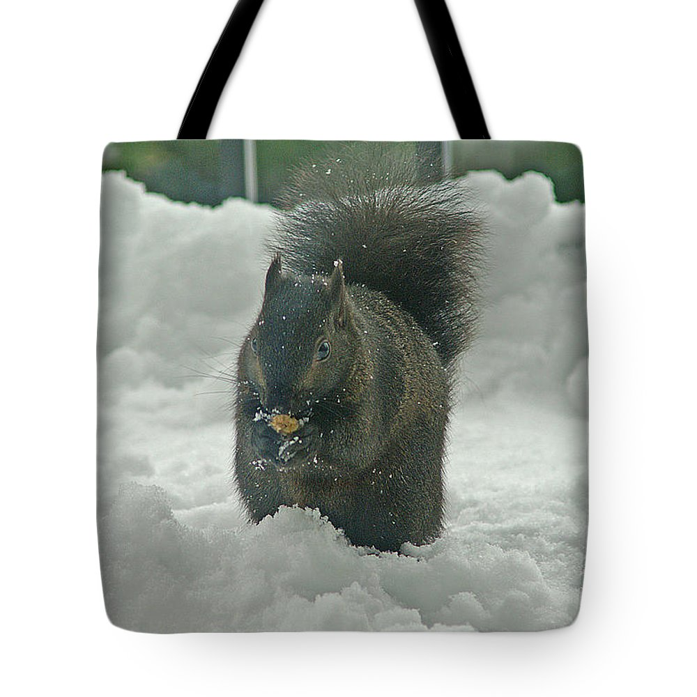 Squirrels Tote Bag featuring the photograph Squirrel In The Snow by Randy Harris
