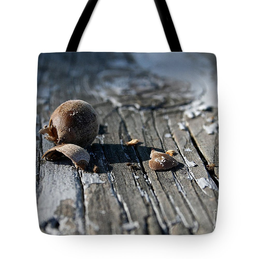 Oak Tote Bag featuring the photograph Squirrel Trash by Susan Herber