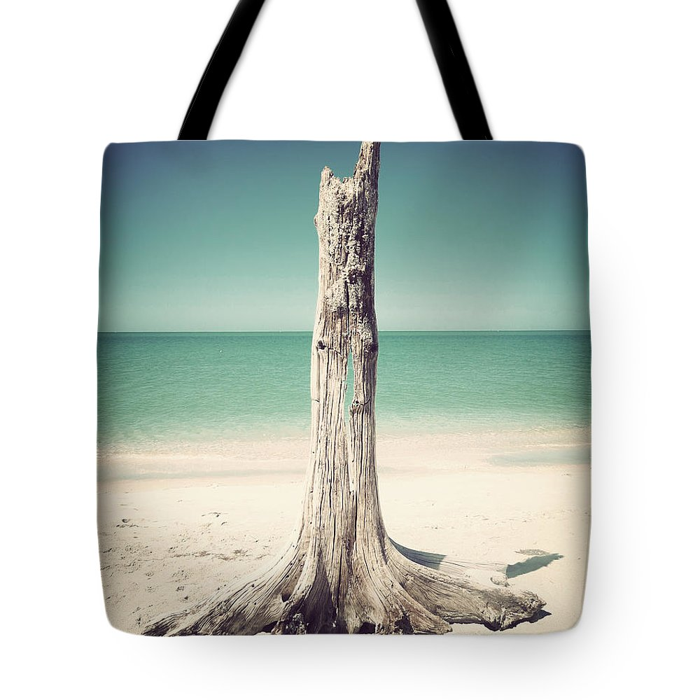 Florida Tote Bag featuring the photograph Standing Alone-vintage by Chris Andruskiewicz