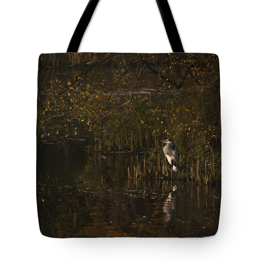 Heron Tote Bag featuring the photograph Standing Guard 2 by Steve Purnell