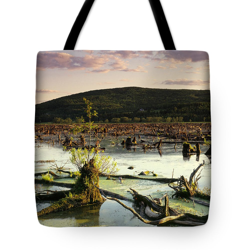 Colour Image Tote Bag featuring the photograph Stater Pond At Sunset by Yves Marcoux