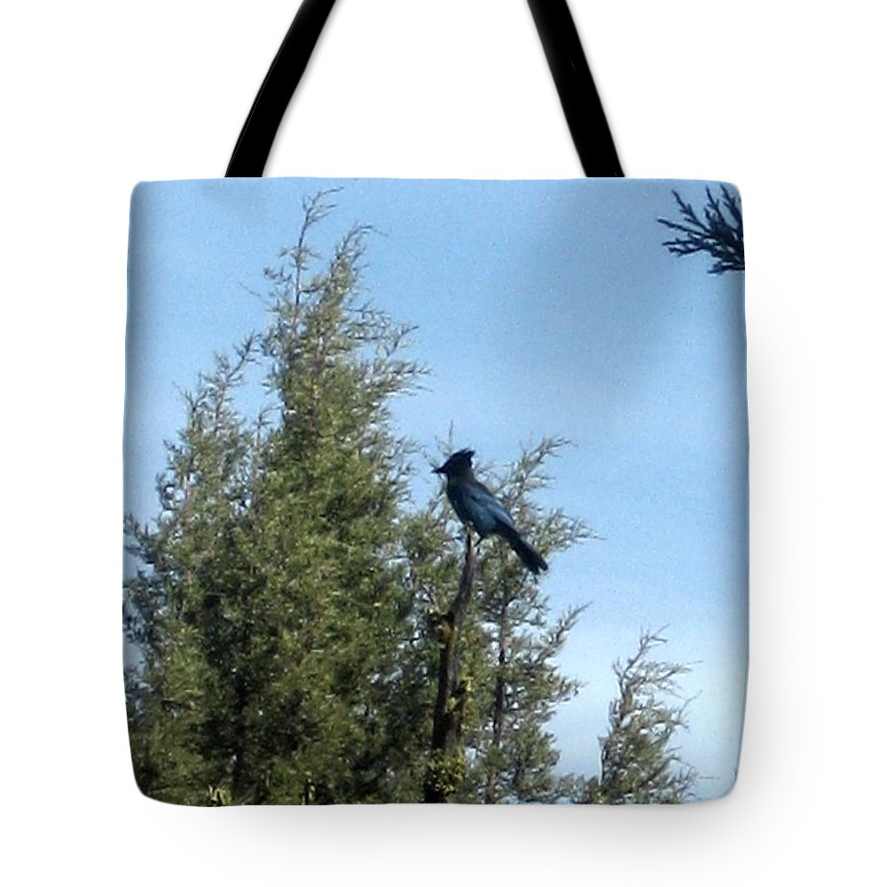 Jay Tote Bag featuring the photograph Steller's Jay 2 by Linda Hutchins