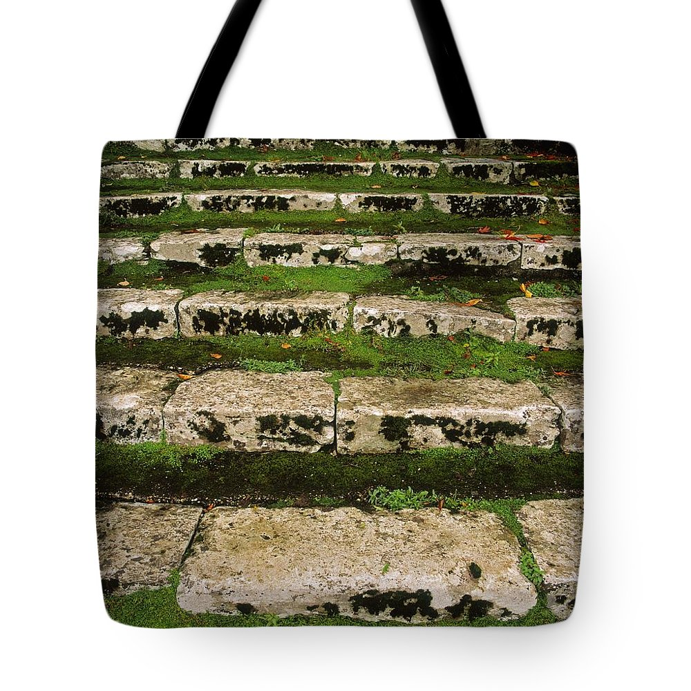 Backgrounds Tote Bag featuring the photograph Steps On The Central Walk, Lismore by The Irish Image Collection