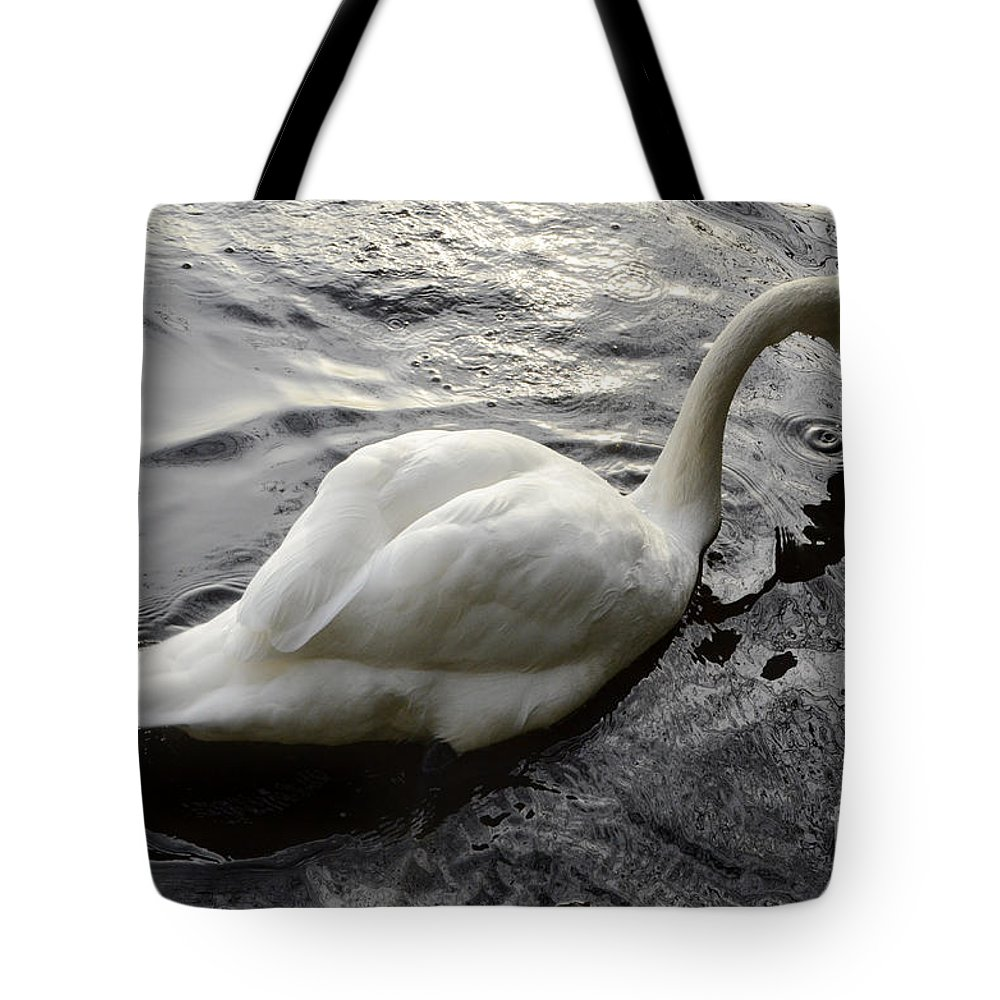 Swan Tote Bag featuring the photograph Still Waters Run Deep by Bob Christopher
