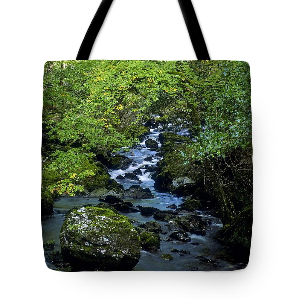 Branch Tote Bag featuring the photograph Stream Flowing Through A Forest by The Irish Image Collection