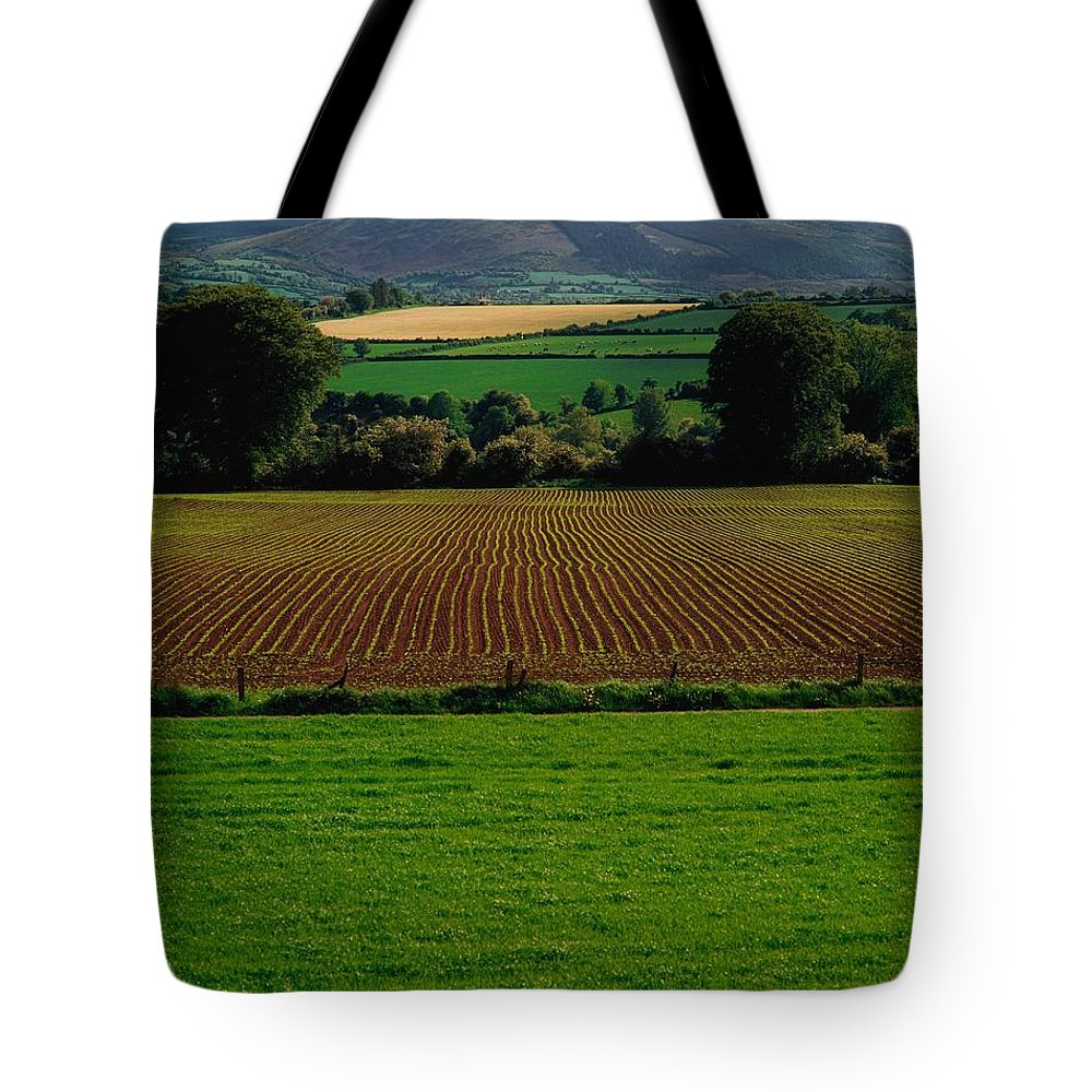 Beauty In Nature Tote Bag featuring the photograph Sugar Beet by The Irish Image Collection