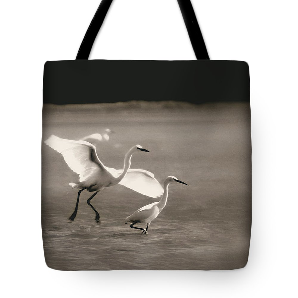 Bird Tote Bag featuring the photograph Summer Love by Donna Blackhall