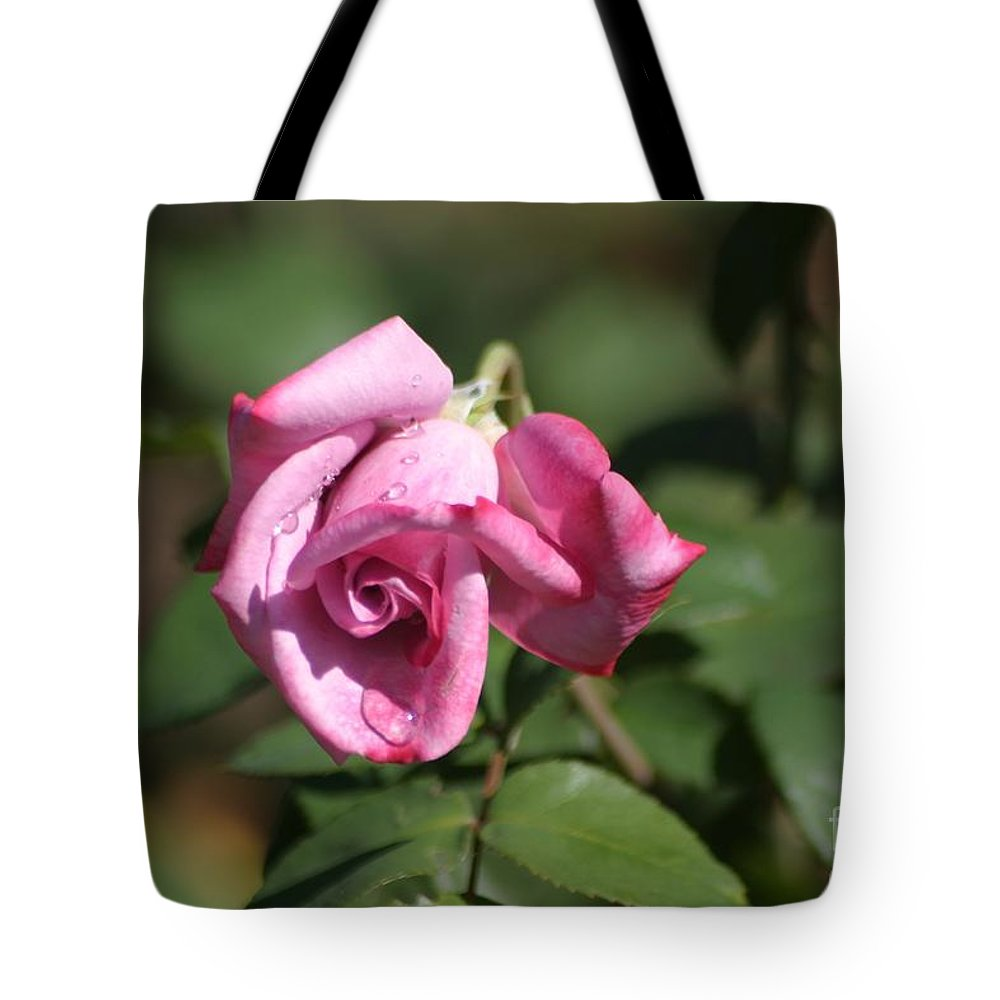 Roses Tote Bag featuring the photograph Summer Sadness by Living Color Photography Lorraine Lynch