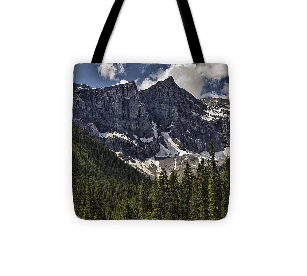 Mountains Tote Bag featuring the photograph Summer Snow by Jo-Anne Gazo-McKim