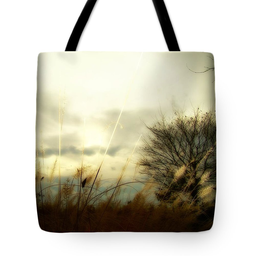 Surreal Tote Bag featuring the photograph Sun Fade by Gothicrow Images