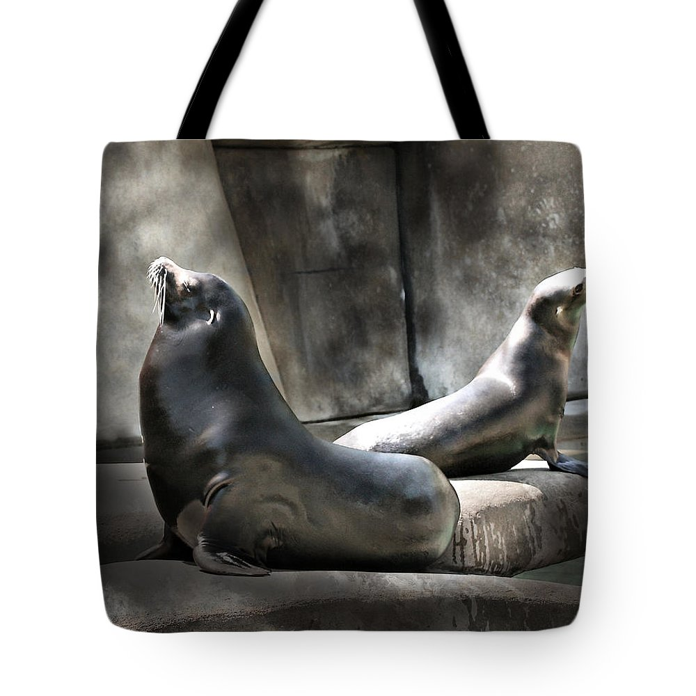 Toned Tote Bag featuring the photograph Sunbathing Seals by Mary Almond
