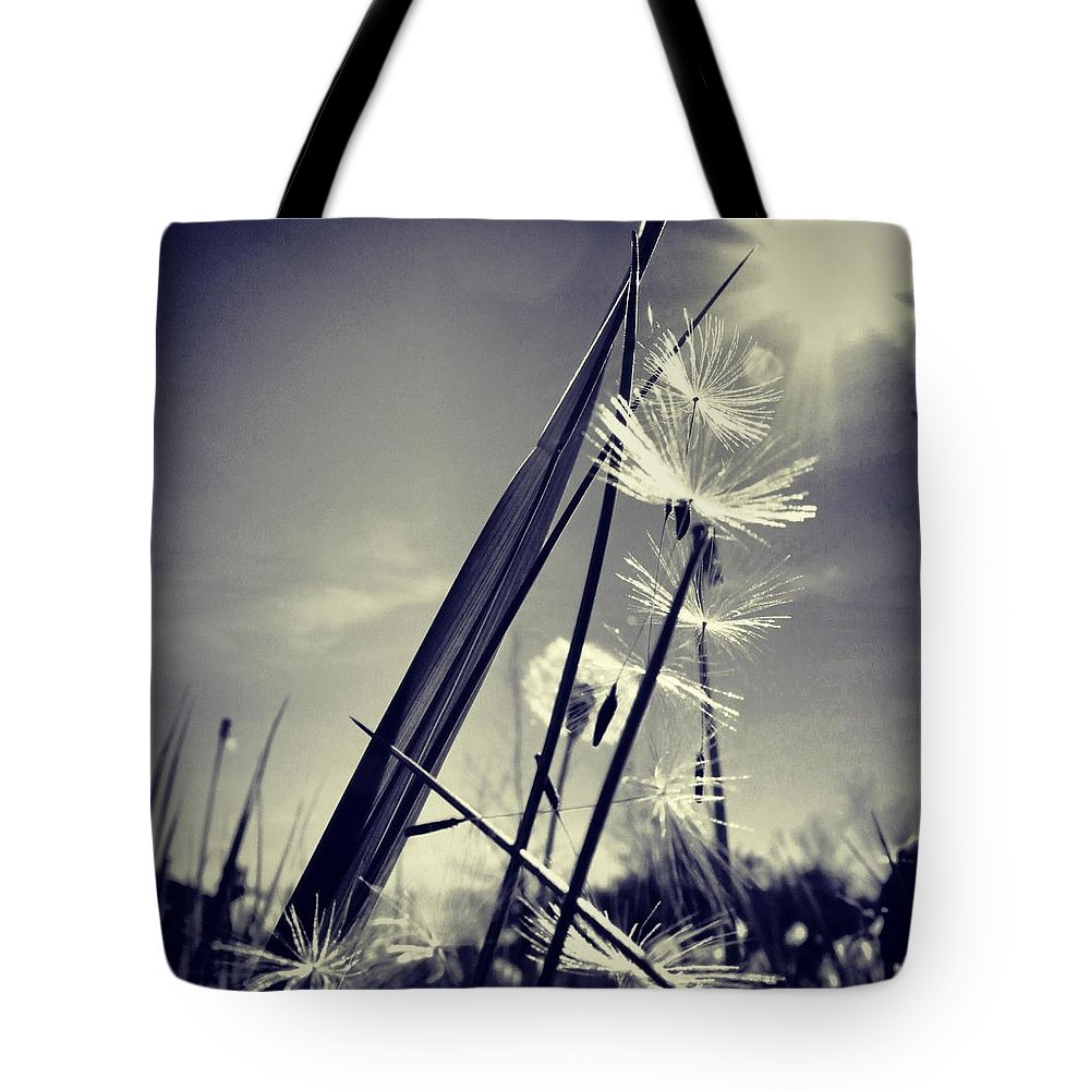 Suncatcher Tote Bag featuring the photograph Suncatcher - Instagram Photo by Marianna Mills