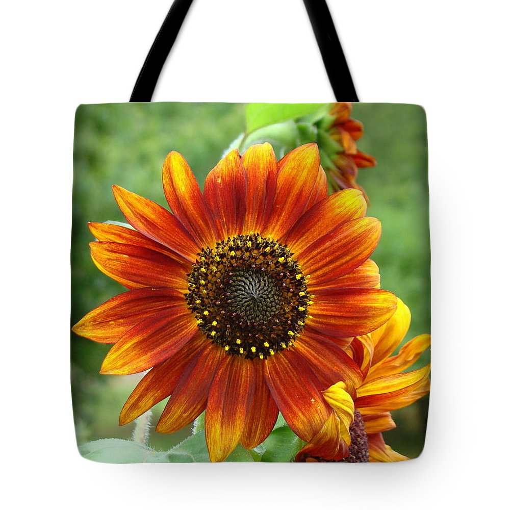 Red Sunflower Tote Bag featuring the photograph Sunflower by Lisa Rose Musselwhite