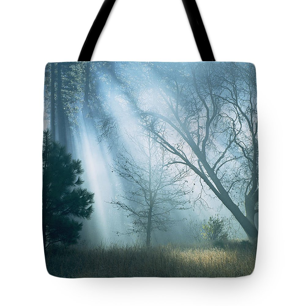 united States Tote Bag featuring the photograph Sunlight Pierces The Morning Mist by Marc Moritsch
