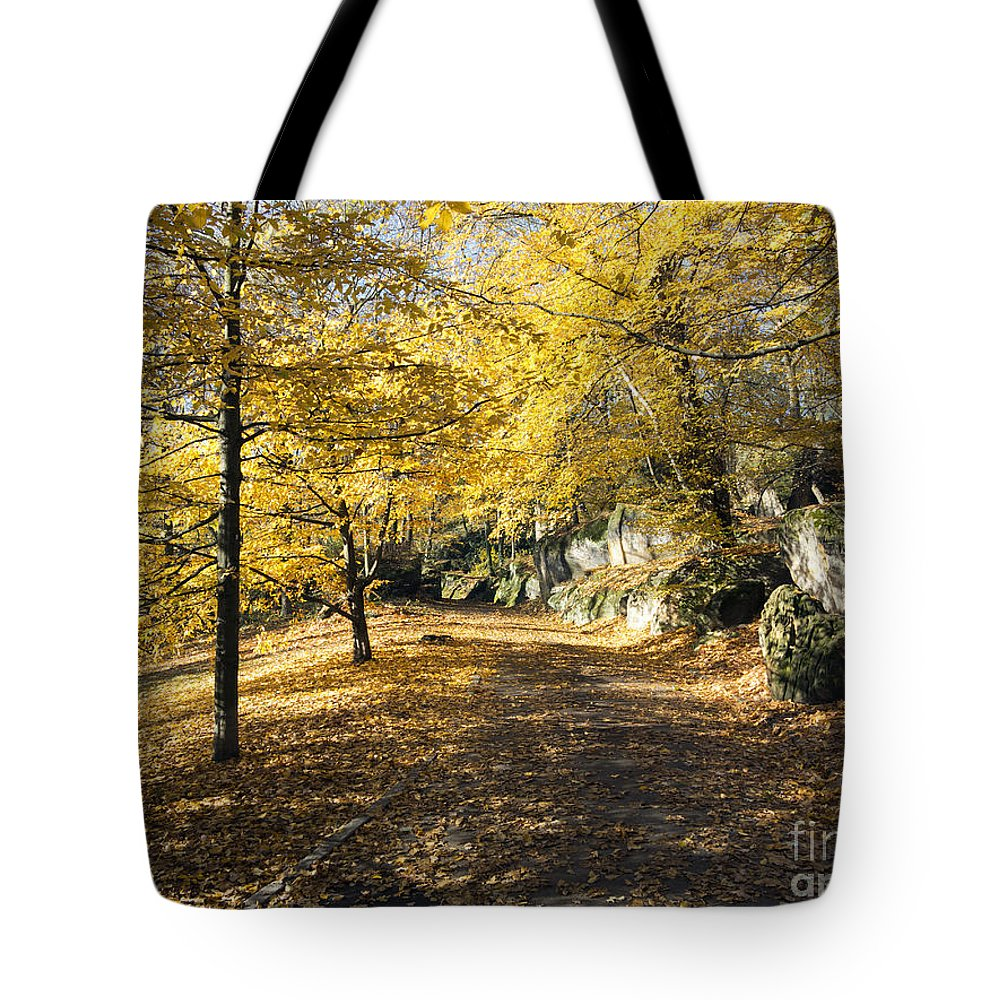 Park Tote Bag featuring the photograph Sunny Day In The Autumn Park by Michal Boubin