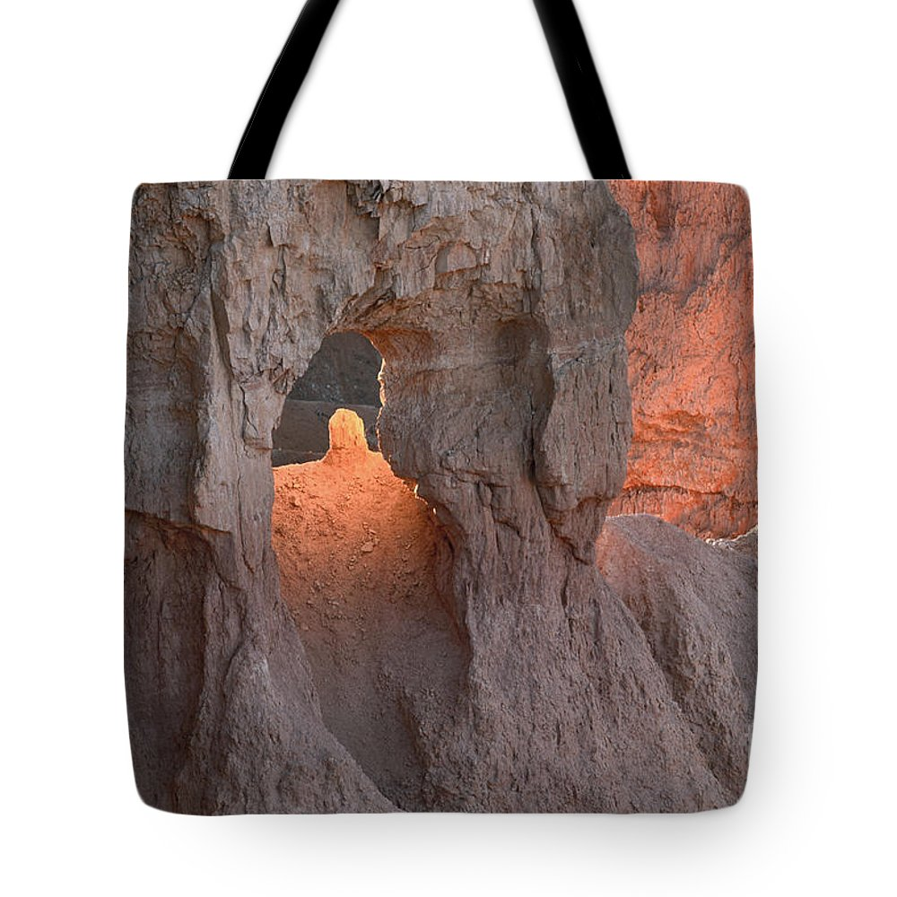 Bronstein Tote Bag featuring the photograph Sunrise Detail Bryce Canyon by Sandra Bronstein