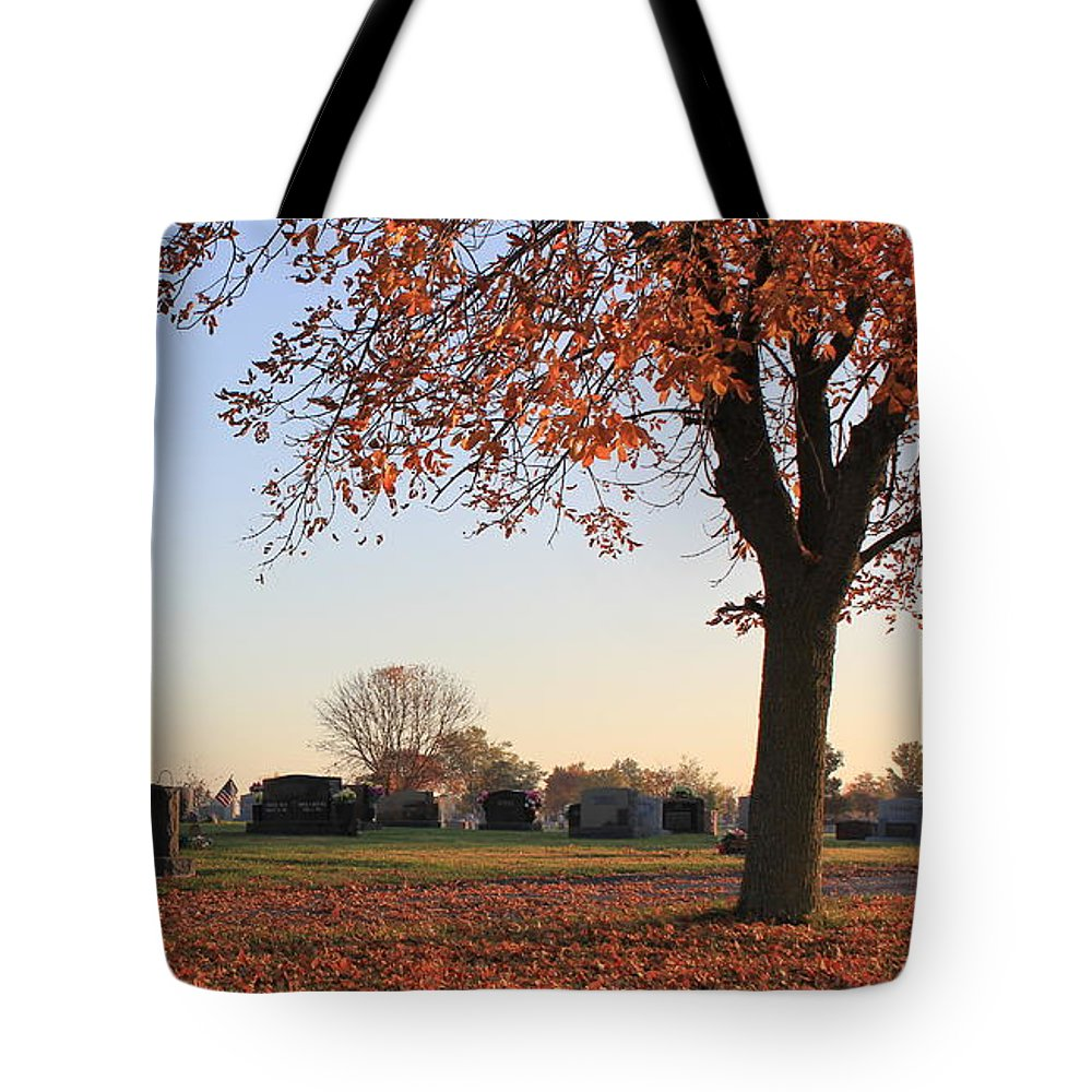 Landscape Tote Bag featuring the photograph Sunrise In The Graveyard by Lee Alexander