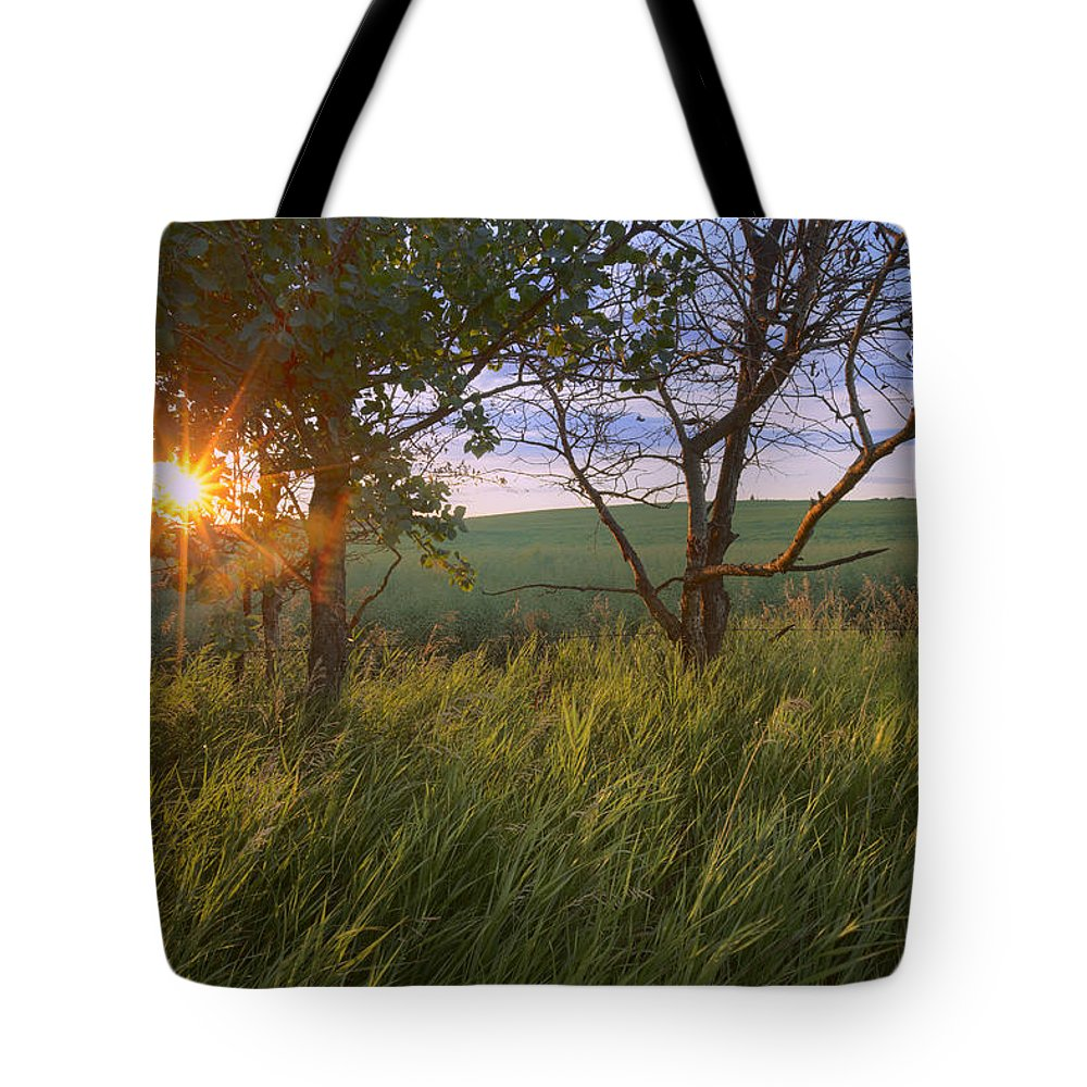 Agriculture Tote Bag featuring the photograph Sunrise On A Farm During The Summer by Dan Jurak
