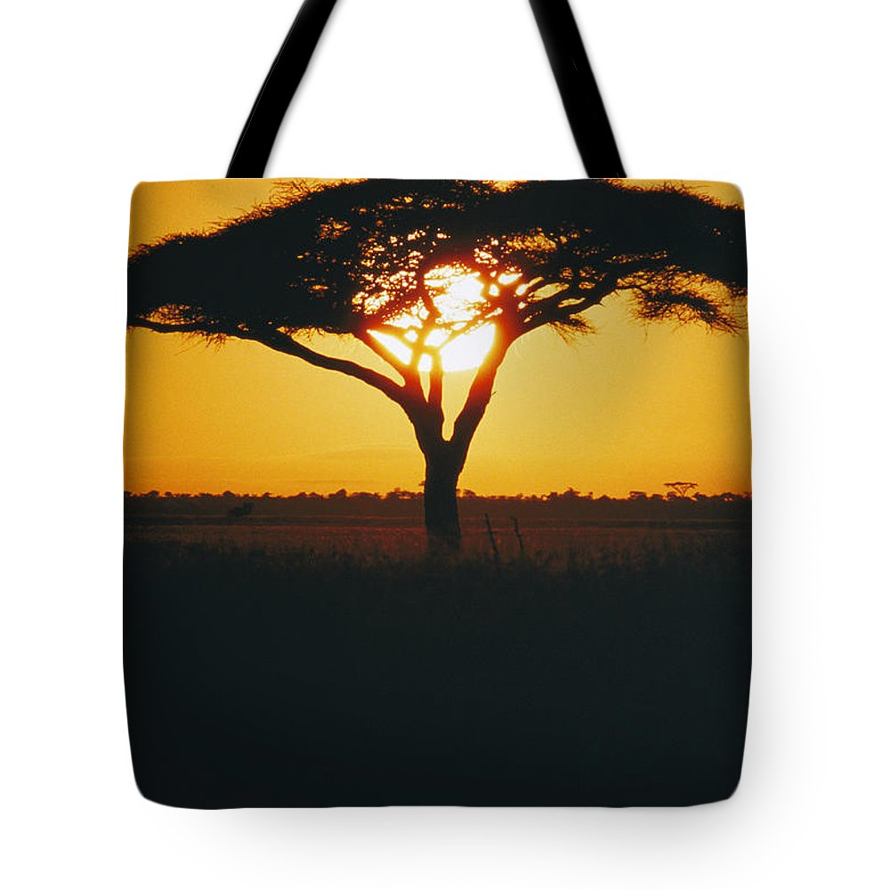 Africa Tote Bag featuring the photograph Sunset And Trees, Serengeti Plains by Skip Brown