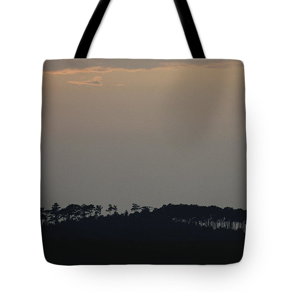 North America Tote Bag featuring the photograph Sunset Over Pine Trees Near Chesapeake by Skip Brown