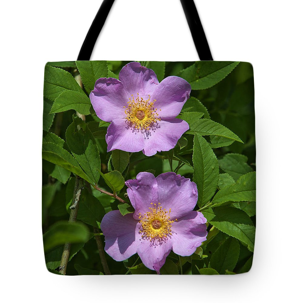 Nature Tote Bag featuring the photograph Swamp Roses Rosa Palustris Dsmf179 by Gerry Gantt