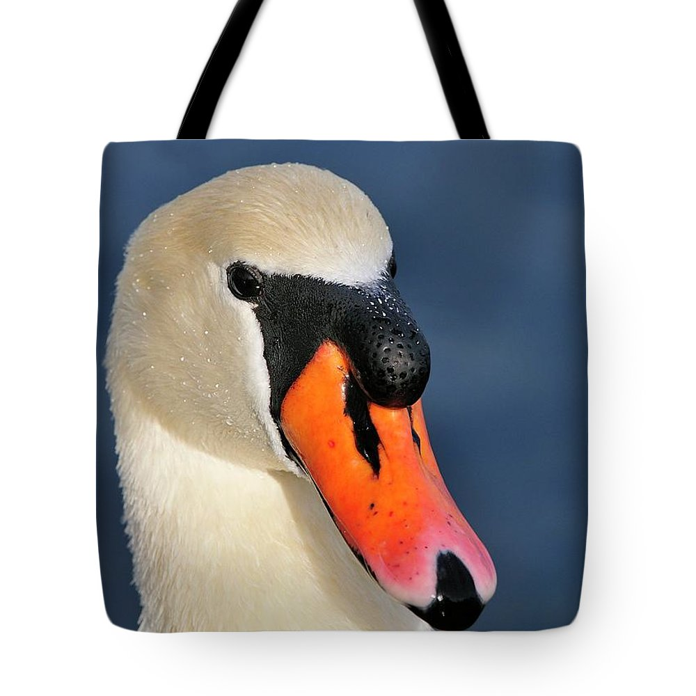 Mute Tote Bag featuring the photograph Swan by Bill Dodsworth