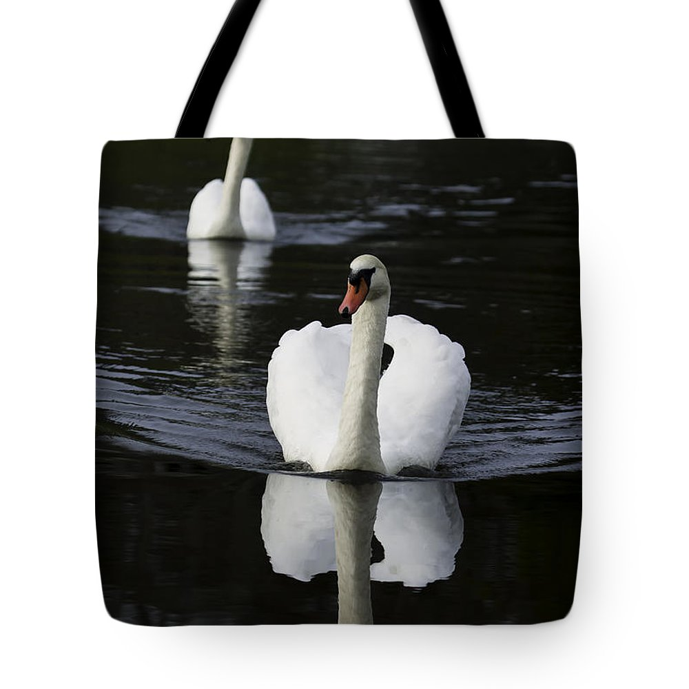 Bird Tote Bag featuring the photograph Swan Pair 2 by Rob Travis