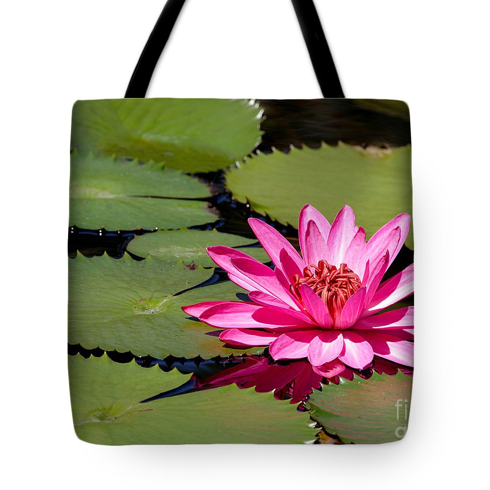 Macro Tote Bag featuring the photograph Sweet Pink Water Lily In The River by Sabrina L Ryan