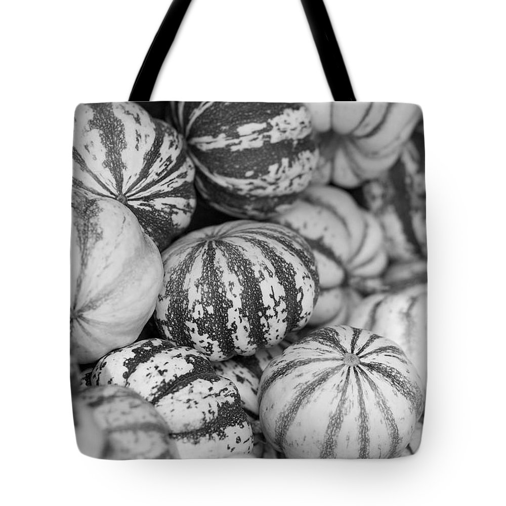 Sweet Dumpling Tote Bag featuring the photograph Sweet Sweet Dumpling In Black by Brooke Roby